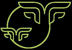 econuisibles - éco-nuisibles - entreprise - fauconnerie - effarouchement - capture - econuisibles - eco-nuisibles